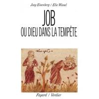 Job ou Dieu dans la tempête, d'Elie Wiesel