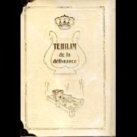 Tehilim de la delivrance (psaumes) traduits moyen format grosses lettres Blanc