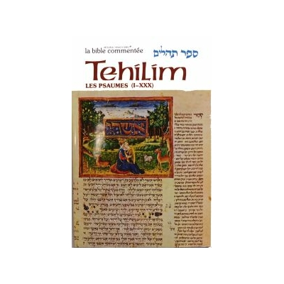 Tehilim / Les psaumes Tome I (De I à XXX /de 1 à 30) avec une grande richesse de commentaires