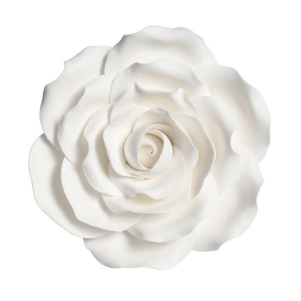 Fleur en sucre - Rose - Blanc