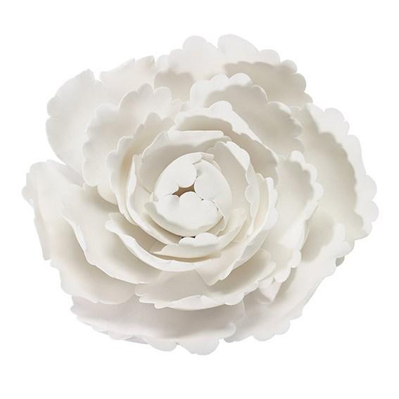 Fleur en sucre - Pivoine 10 cm - Blanc