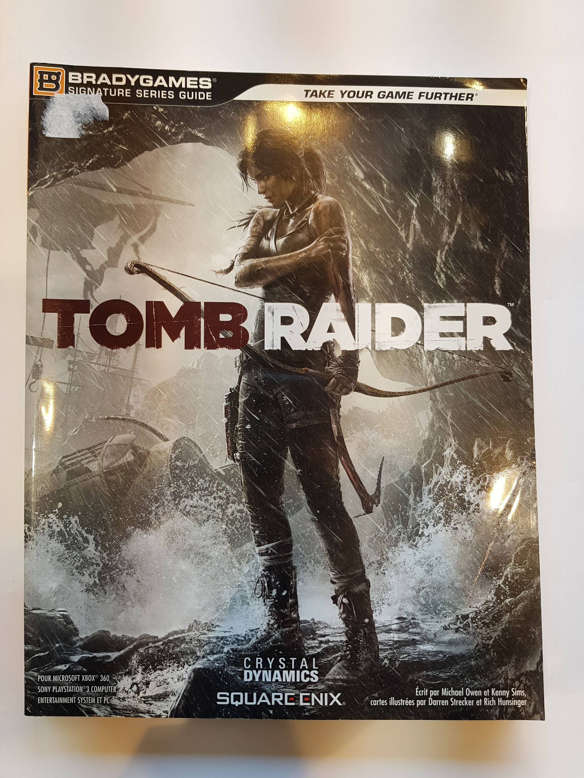 Guide Tomb Raider FR occasion