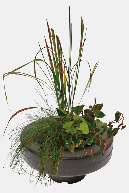 SuperFish Panier plante flottant Ø 22cm