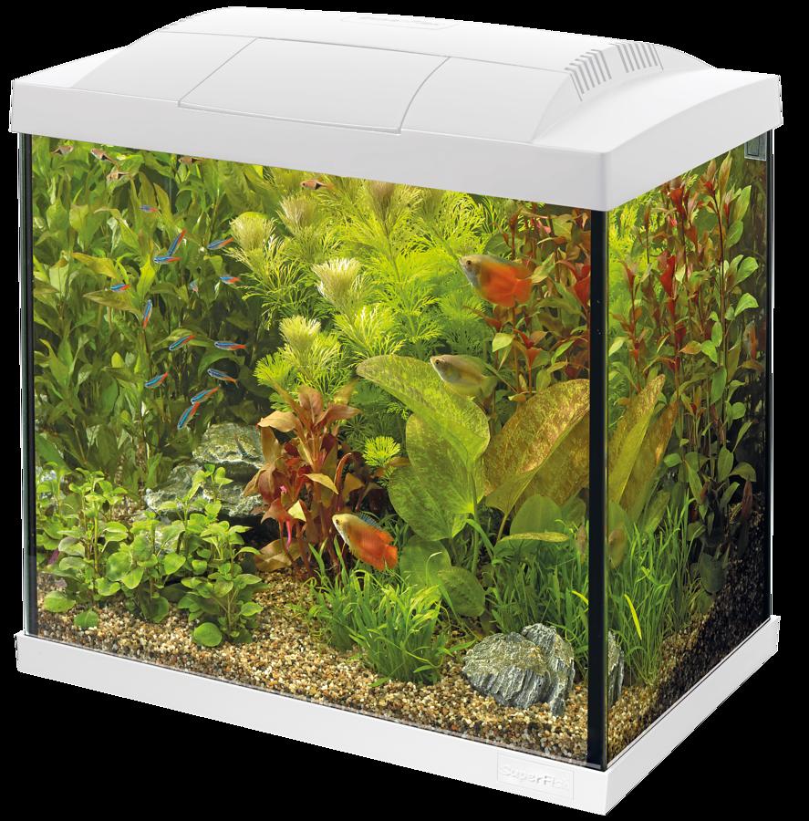SuperFish Aquarium Start 30 Tropical Kit - Blanc