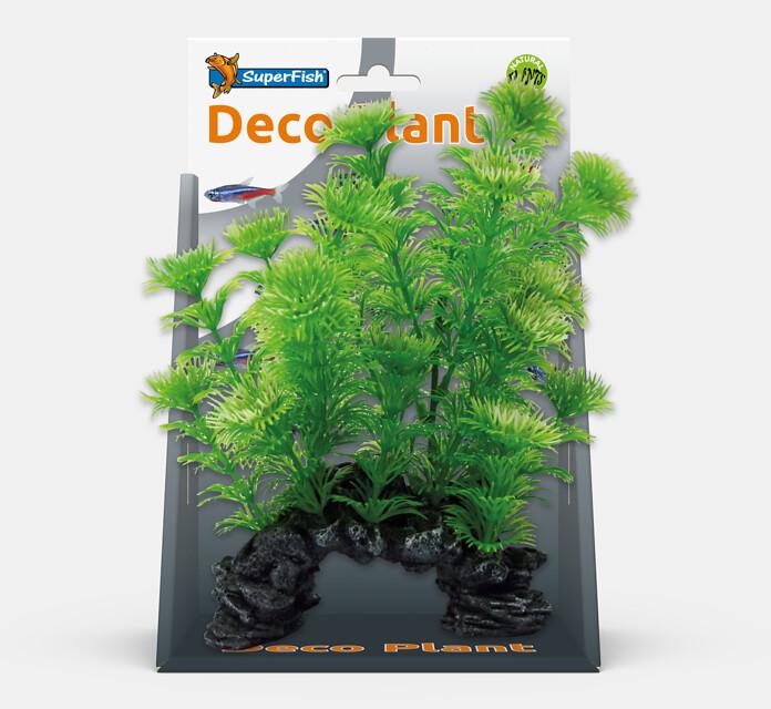 SF DECO PLANT S CABOMBA