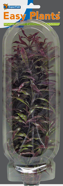 SUPERFISH EASY PLANTS HAUTE 30 CM NMBR. 3
