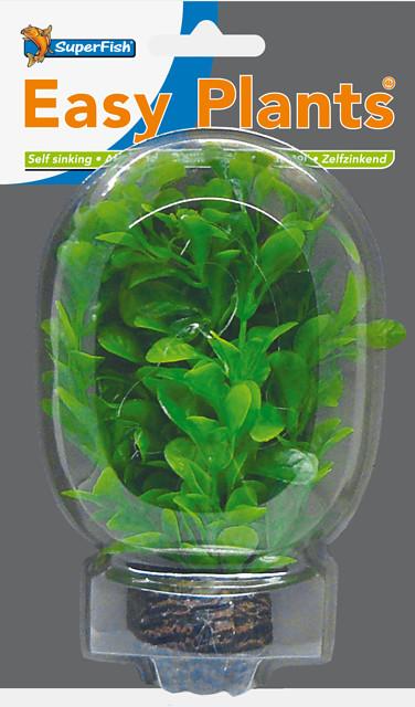 SUPERFISH EASY PLANTS AVANT PLAN 13 CM NMBR. 8
