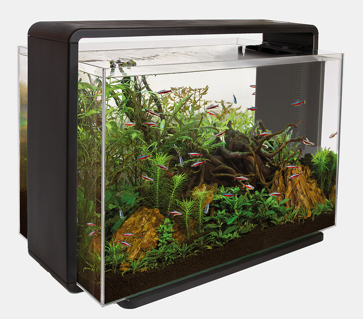 SuperFish Aquarium HOME 80 - Noir