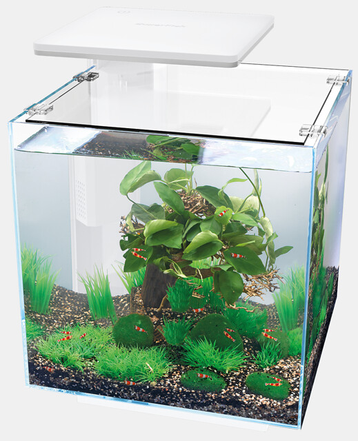 SuperFish Aquarium QUBIQ 30 PRO - Blanc
