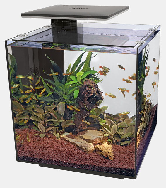 SuperFish Aquarium QUBIQ 60 PRO - Noir