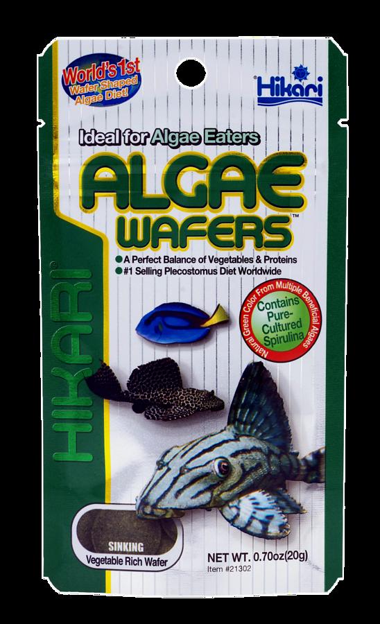HIKARI ALGAE WAFERS 40 GR