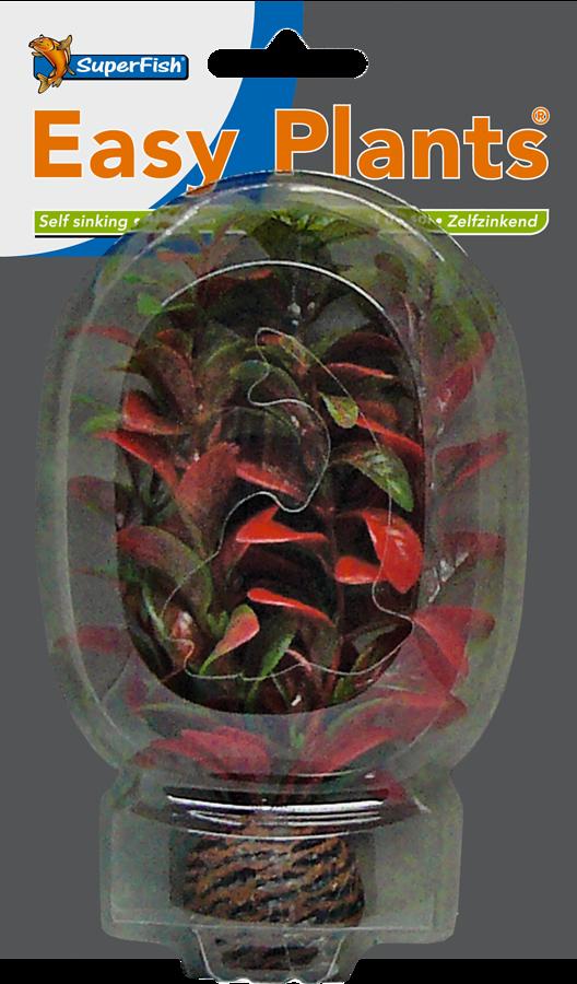 SUPERFISH EASY PLANTS AVANT PLAN 13 CM NMBR. 7
