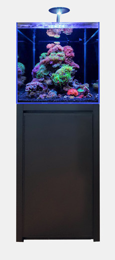 BLUE MARINE REEF 125 NOIR KIT COMPLET