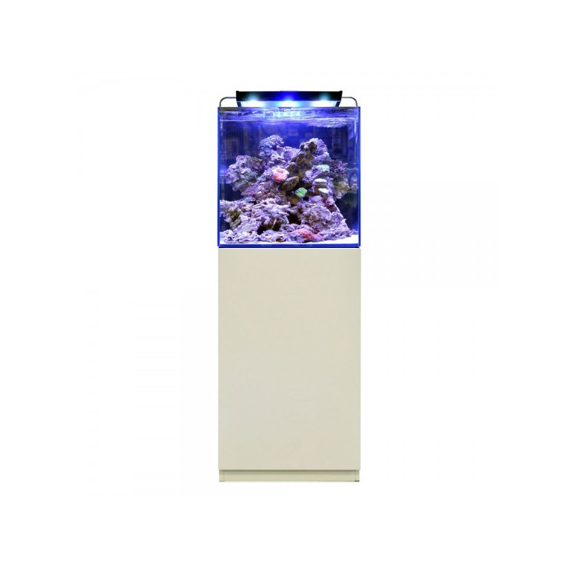BLUE MARINE REEF 125 BLANC KIT COMPLET