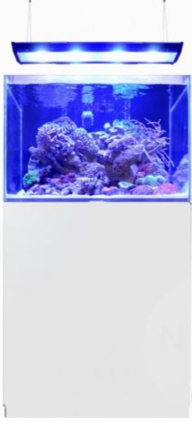BLUE MARINE REEF 200 BLANC KIT COMPLET