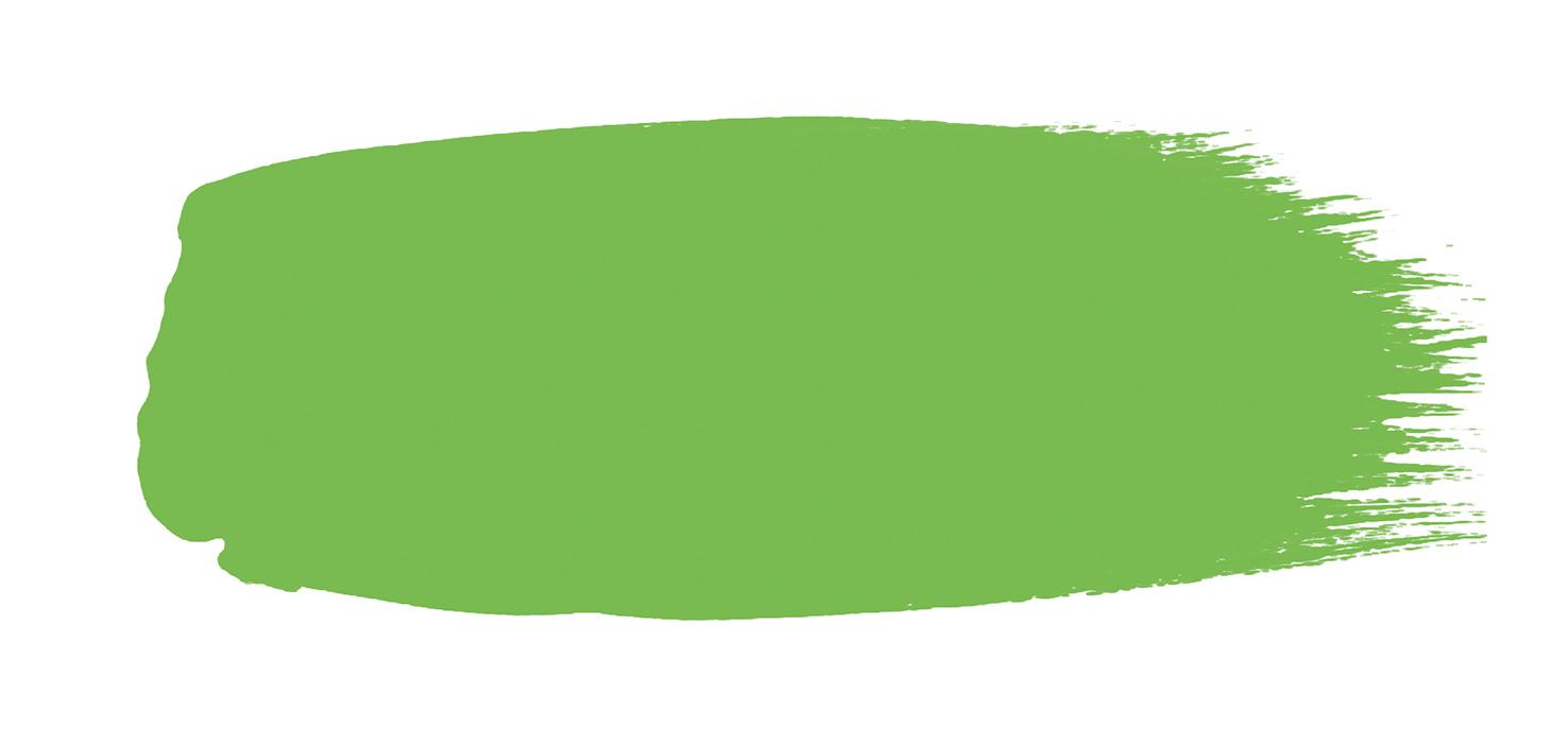 Peinture Vert Anis - Phthalo Green n°199 - Little Greene