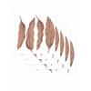 leaf-set-de-5-planches-papermint2
