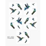 colibri-sticker2