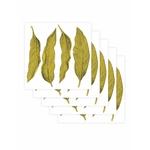 leaf-set-de-5-planches-papermint1