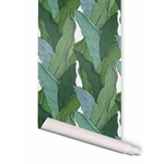 leaf-rouleau-10ml (1)