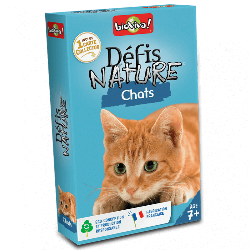 Défi nature - Chat