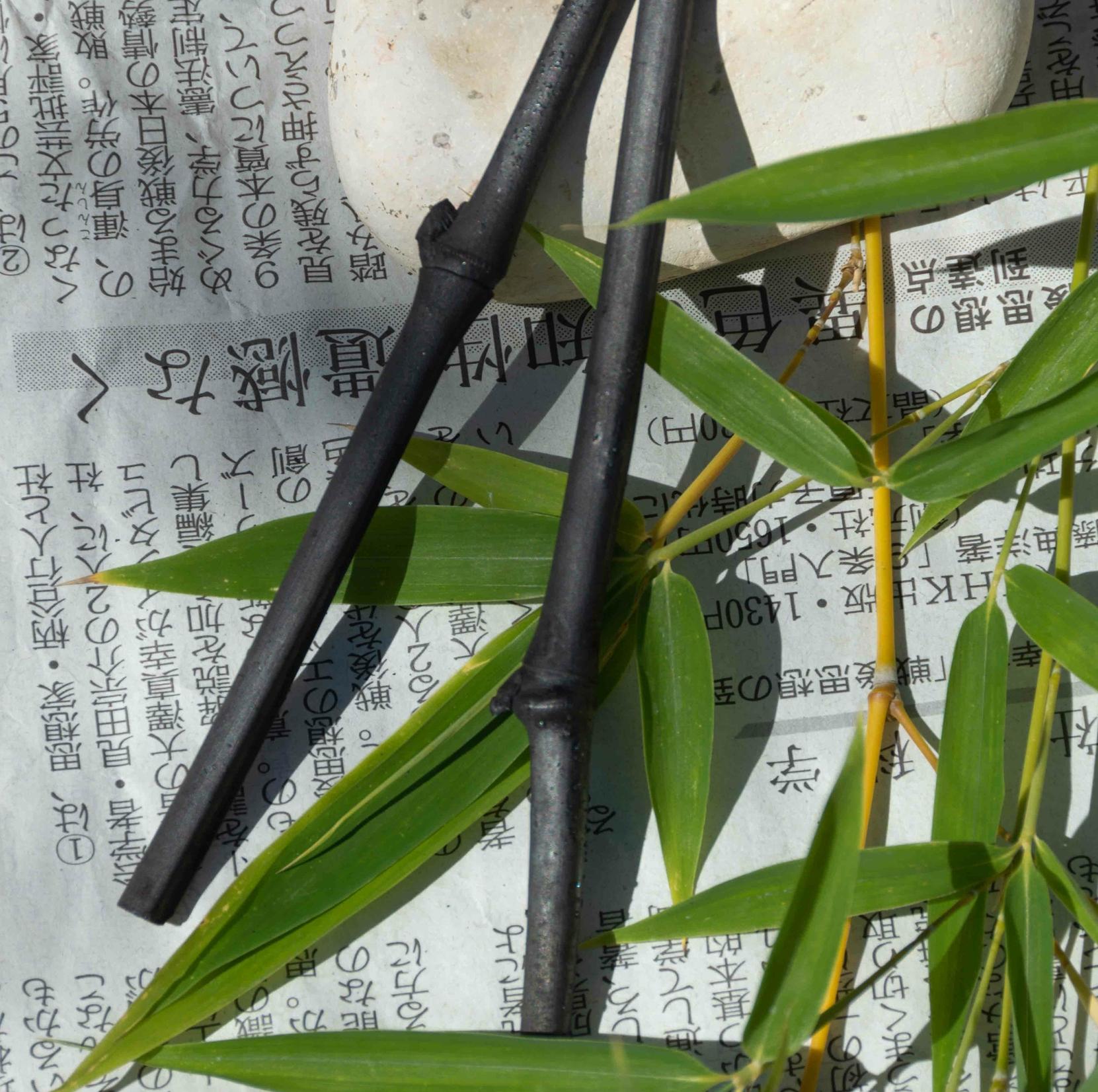 Charbon végétal actif de bambou - 2 brindilles - 1 an de purification d\'eau