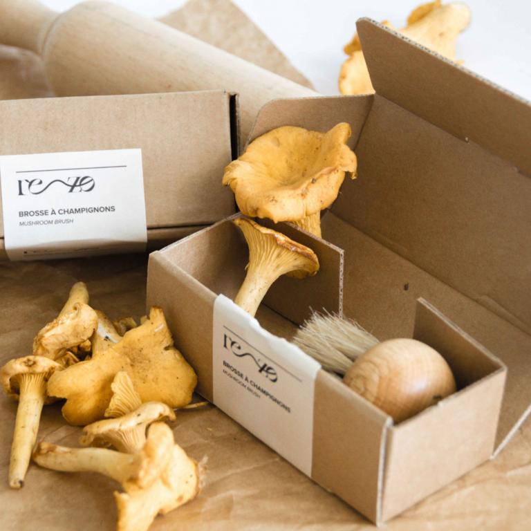 Brosse à champignons Rezo