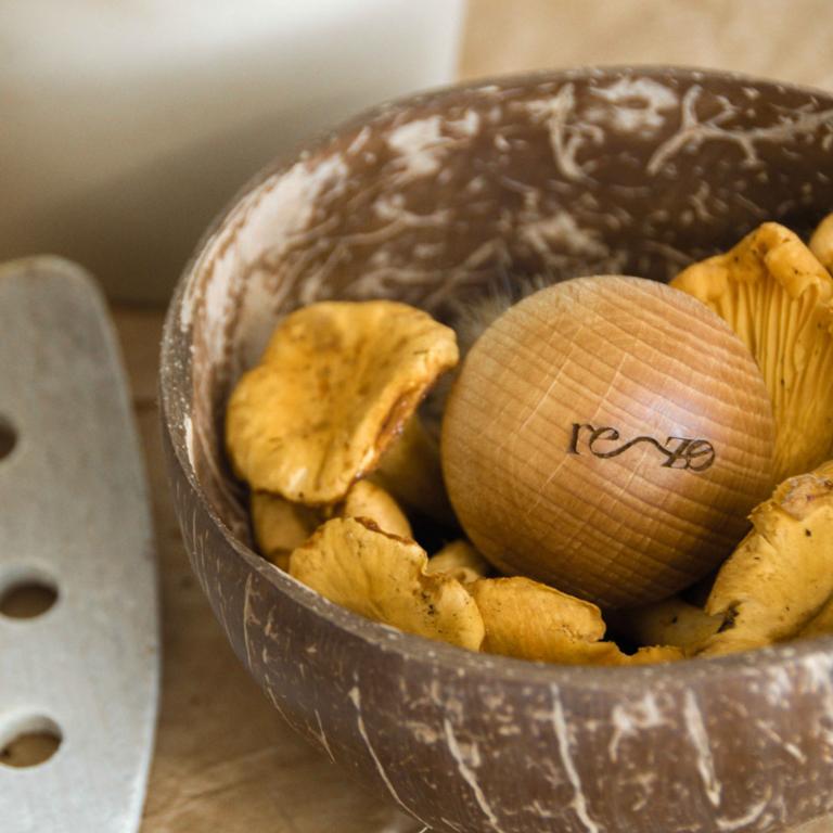Brosse pour nettoyer les champignons Rezo