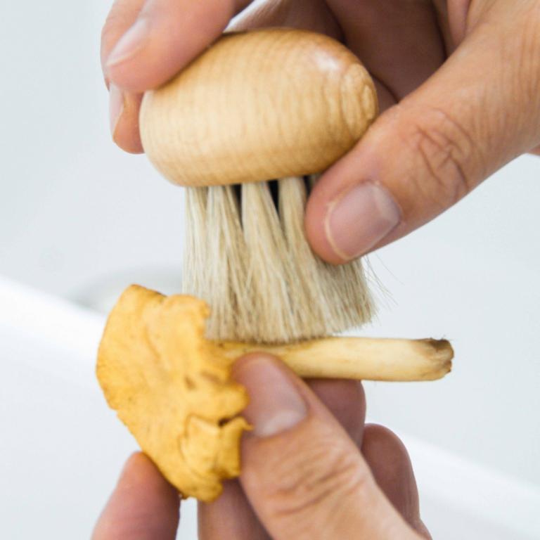 Laver les champignons avec la brosse Rezo