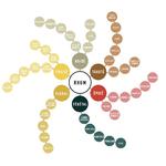 roue-des-aromes-du-rhum-1000-897-75-4744-o