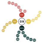 roue-des-aromes-du-gin-1000-964-75-4746-o