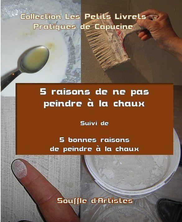 Livre 5 raisons de ne pas peindre à la chaux suivi de 5 bonnes raisons de peindre à la chaux