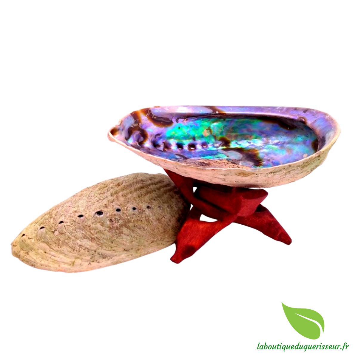 Coquille d\'Ormeau Abalone Arc-en-Ciel (Paua) avec ou sans support en bois