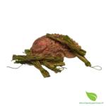tresse 10cm foin odeur (2)