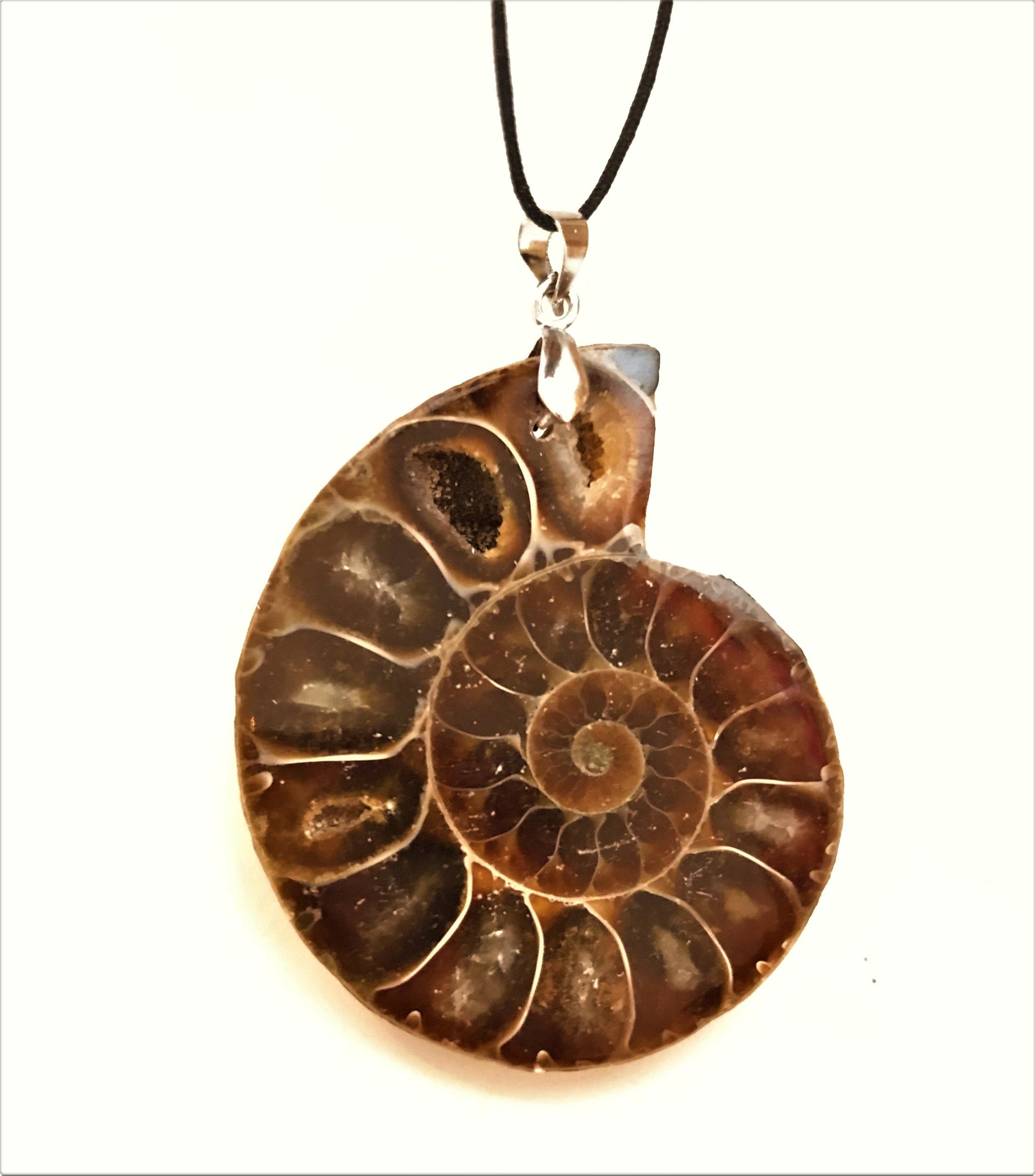 Pendentif Ammonite Fossile