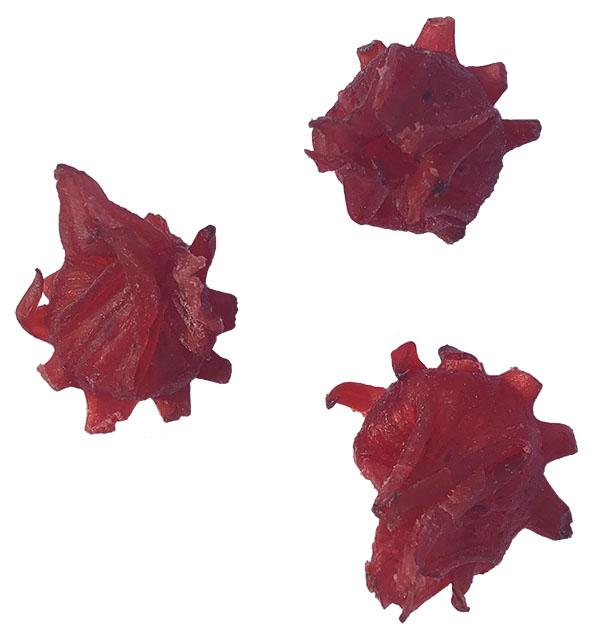 Fleurs d\'Hibiscus Déshydraté (sachet de 100 grammes)