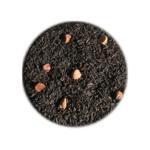 Thé Noir _ Cacao For Ever