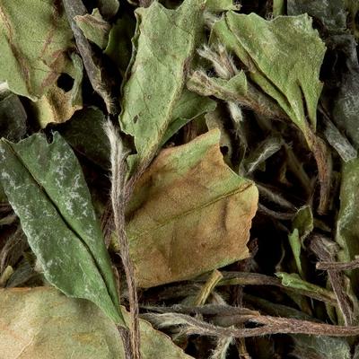 Thé Blanc de Chine Paï Mu Tan