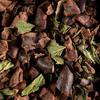 cacao-menthe