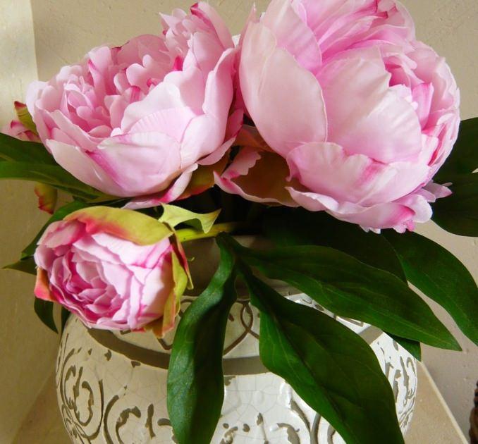 Pivoine Cornelia en bouquet