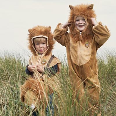 photo-ambiance-deguisement-lion