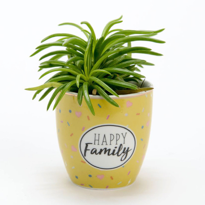 Mini Pot - Happy Family