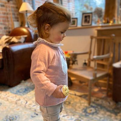 Pull bébé fille rose poudre à motif pingouin