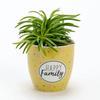 mini-pot-happy-family-1