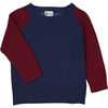 pull bicolore bleu & rouge vin_1000x1000