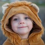 cape-petit-lion-1