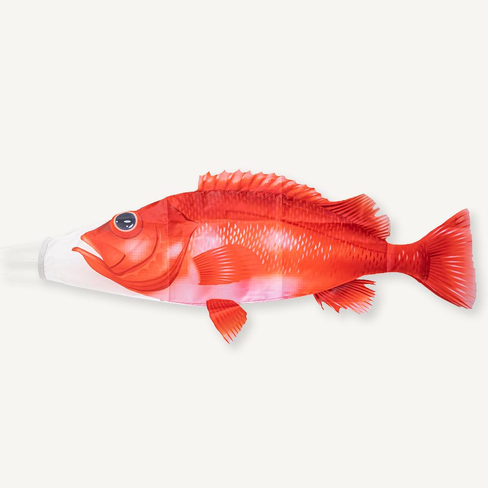 manche-à-air-merou-rouge