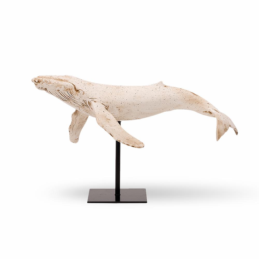 Baleine blanche sur base