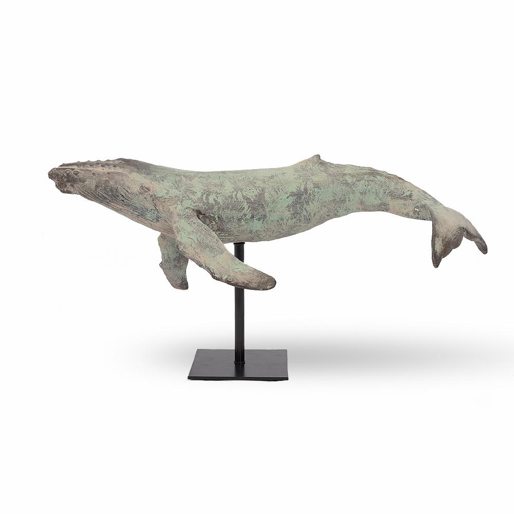 Baleine sur base
