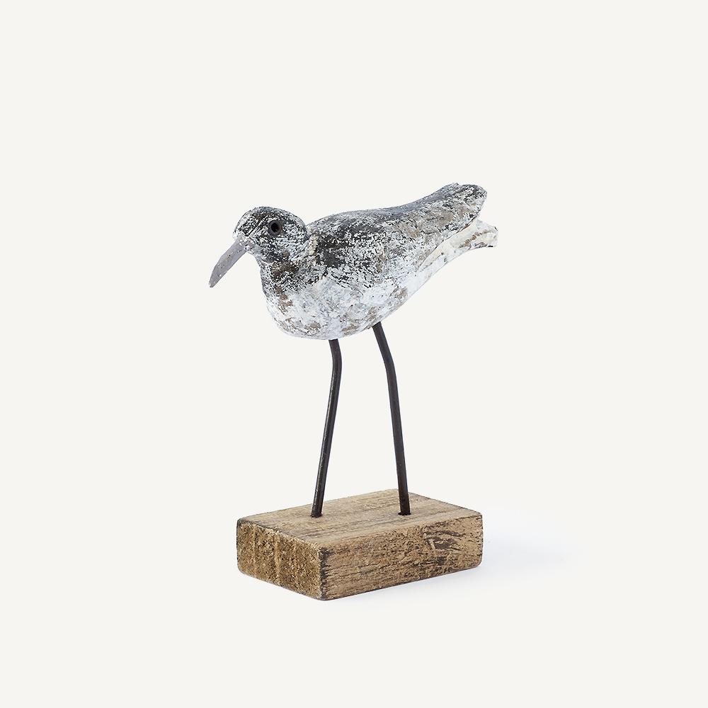 Petit oiseau bécasseau